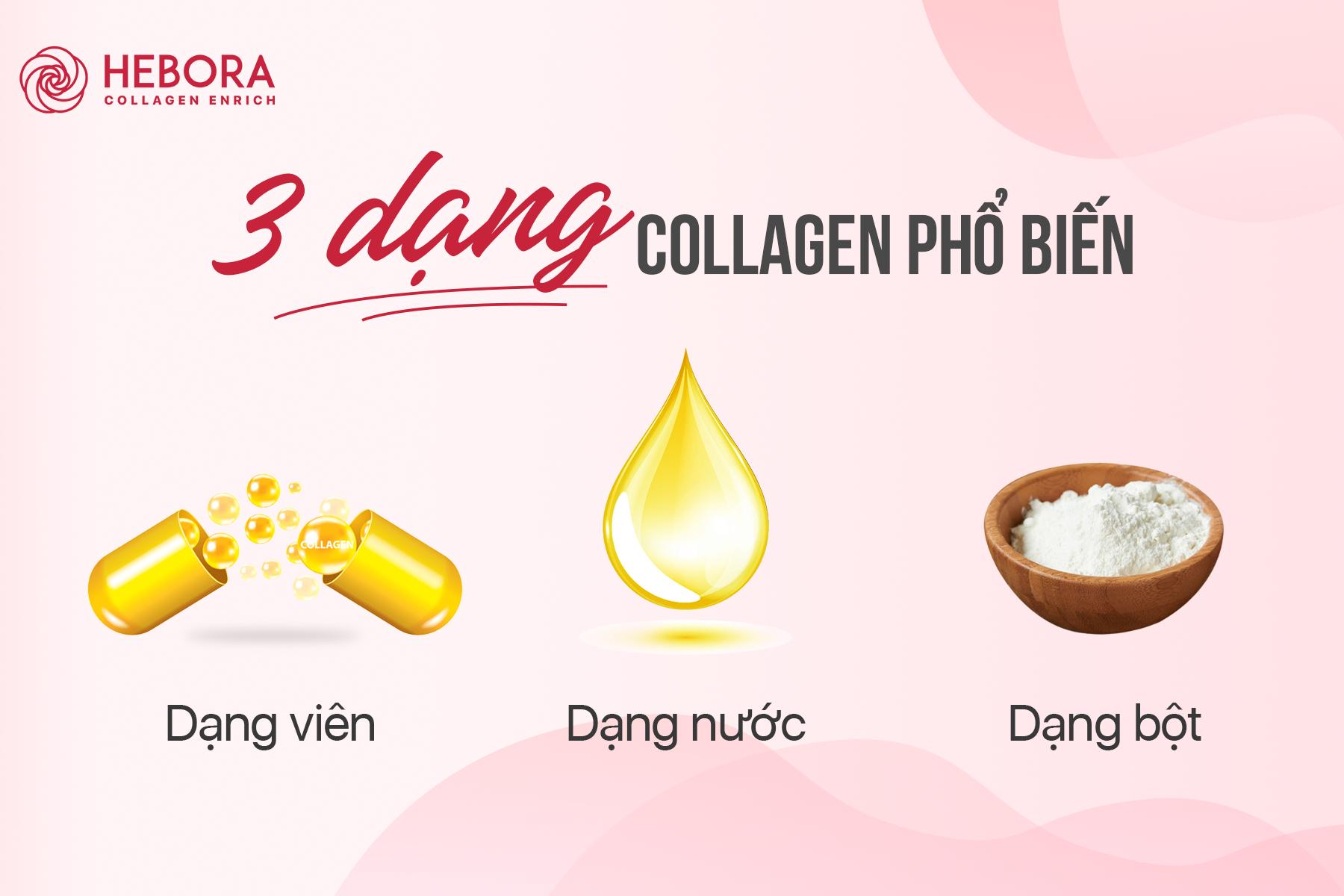 3 dạng Collagen phổ biến