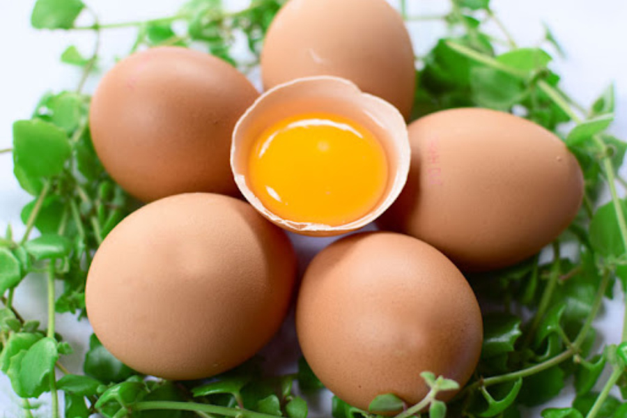 Collagen từ trứng gà rất tốt