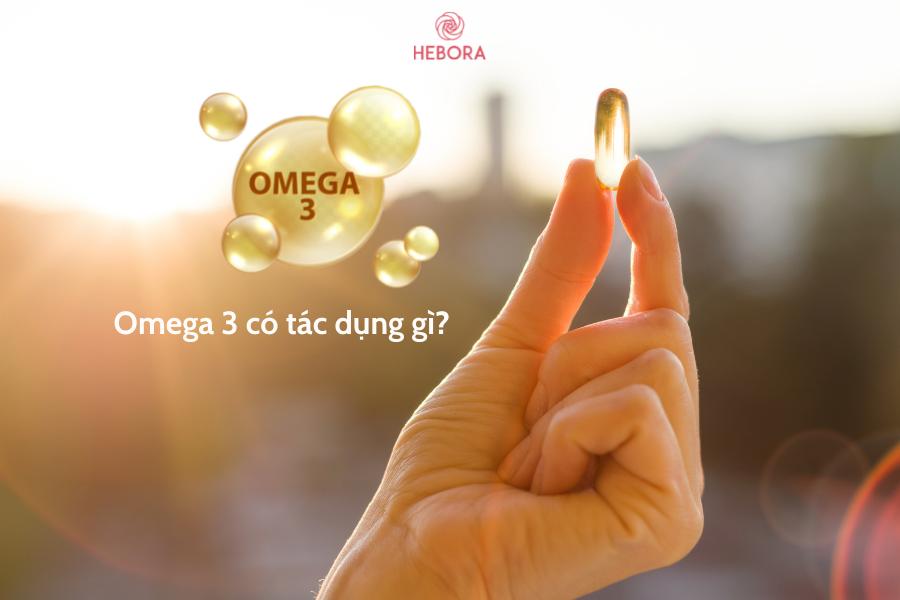 Omega 3 có tác dụng gì?